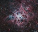 NGC 2070 - The Cosmic Web of the Tarantula Nebula  (size: 39.95'x10.25')