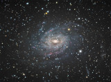 NGC6744 - Milky Way Look Alike