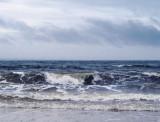 seashore_8.jpg