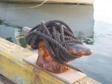 wharf_02.jpg