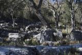Termessos December 2013 3370.jpg