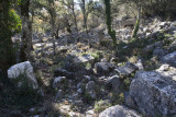 Termessos December 2013 3376.jpg
