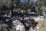 Termessos December 2013 3378.jpg