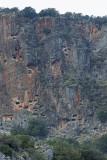 Pinara December 2013 4477.jpg