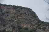 Pinara December 2013 4486.jpg