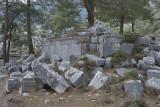 Pinara December 2013 4513.jpg