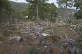 Pinara December 2013 4515.jpg