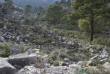 Pinara December 2013 4533.jpg