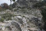 Pinara December 2013 4551.jpg