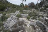 Pinara December 2013 4553.jpg