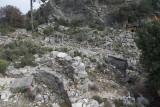 Pinara December 2013 4556.jpg