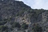 Pinara December 2013 4580.jpg