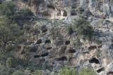 Pinara December 2013 4581.jpg