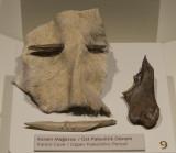 Ankara Anatolian Civilizations Museum september 2014 1325.jpg
