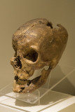 Ankara Anatolian Civilizations Museum september 2014 1484.jpg