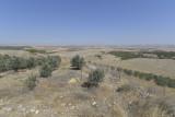 Gobekli Tepe september 2014 3175.jpg