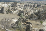 Cappadocia fox country Urgup september 2014 1772.jpg