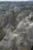 Cappadocia fox country Urgup september 2014 1776.jpg