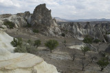 Cappadocia fox country Urgup september 2014 1783.jpg