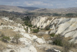 Cappadocia fox country Urgup september 2014 1784.jpg