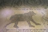 Gaziantep Zeugma Museum Hülümen Mosaic september 2014 2744.jpg