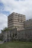 Istanbul Walls near Edirnekapi 2015 0078.jpg