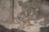 Istanbul Mosaic Museum dec 2016 1550.jpg