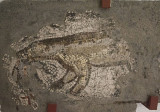 Istanbul Mosaic Museum dec 2016 1578.jpg