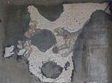 Istanbul Mosaic Museum dec 2016 1641.jpg