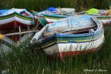20150115_7333 lago titcaca boats bolivia.jpg