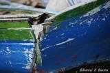 20150115_7334 lago titcaca boats bolivia.jpg