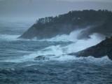 Gail - Stormy - Rongesundet