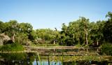 Shady Lakes