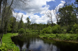 On the Au Sable River