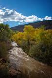 Autumn on the Jemez River