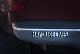 Surviving Bumper Sticker