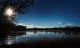 Late Afternoon, Bosque del Apache