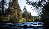 Conejos River, CO