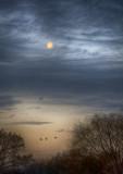 Moonset Arrivals