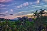 Idylic Ubud Morning