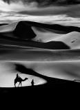 Desert Monochrome