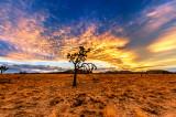 Desert Sunset Drama