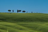 In the Tuscan Countryside