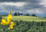 Spring in Bloom; Cappella di Vitaleta