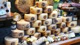 Wheels of fine pecarino cheese