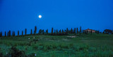 Under A Tuscan Moon