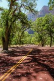Red Roads Of Zion
