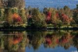 Reflection - Lafarge Lake