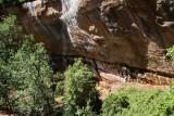 Emerald Pools Trail