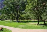 Zion Lodge Lawn